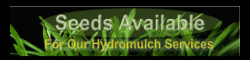 Available Seeds for Hydromulching